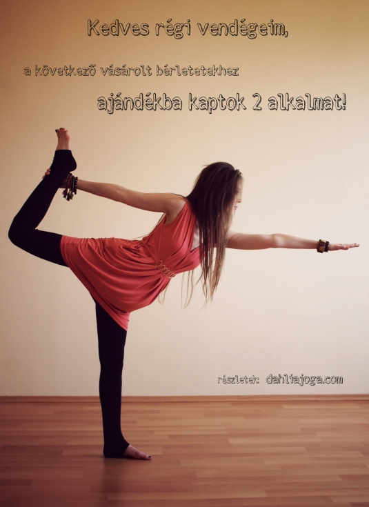 dahlia jóga akció